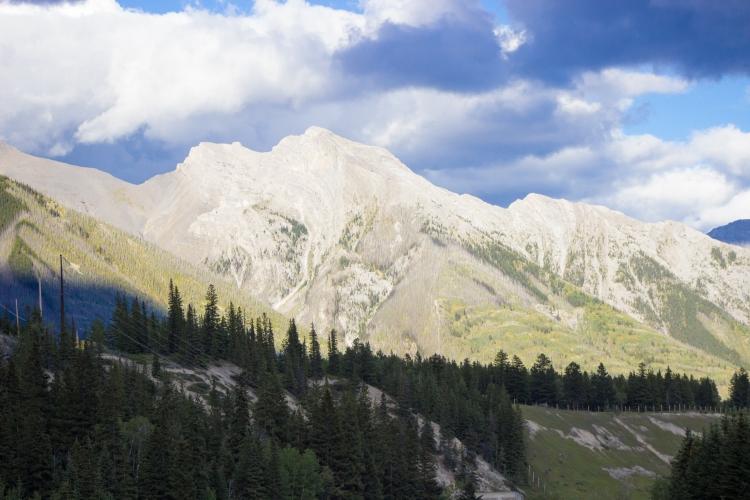 kpardell okotoks landscape 7-9252