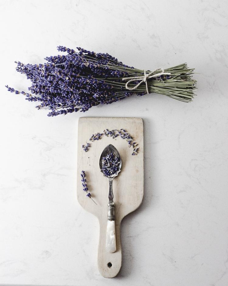 kpardell oslight1 lavendar-0139
