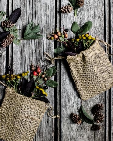 kpardell-organic-burlap-berries-0586