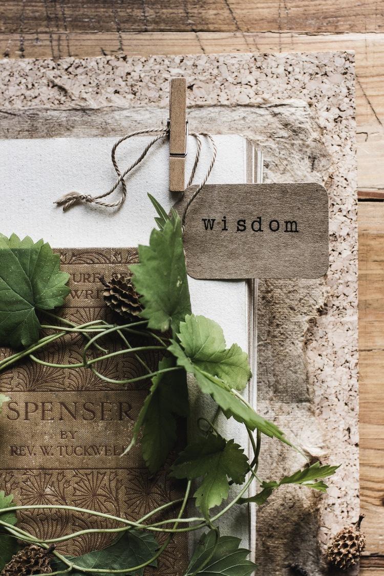 kpardell-odrama-wisdom-1800