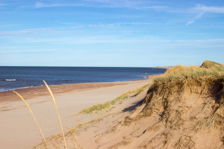 kpardell-red-beach-pei-2166