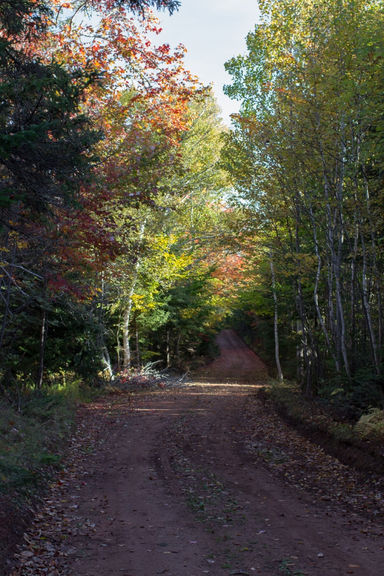 kpardell-scenic-heritage-road-2-2082
