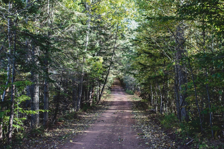 kpardell-scenic-heritage-road-2070