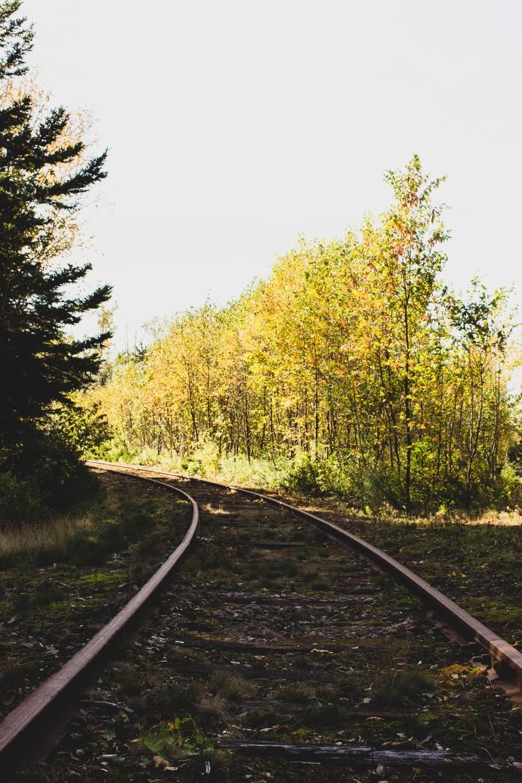 kpardell-train-track-pei-2123