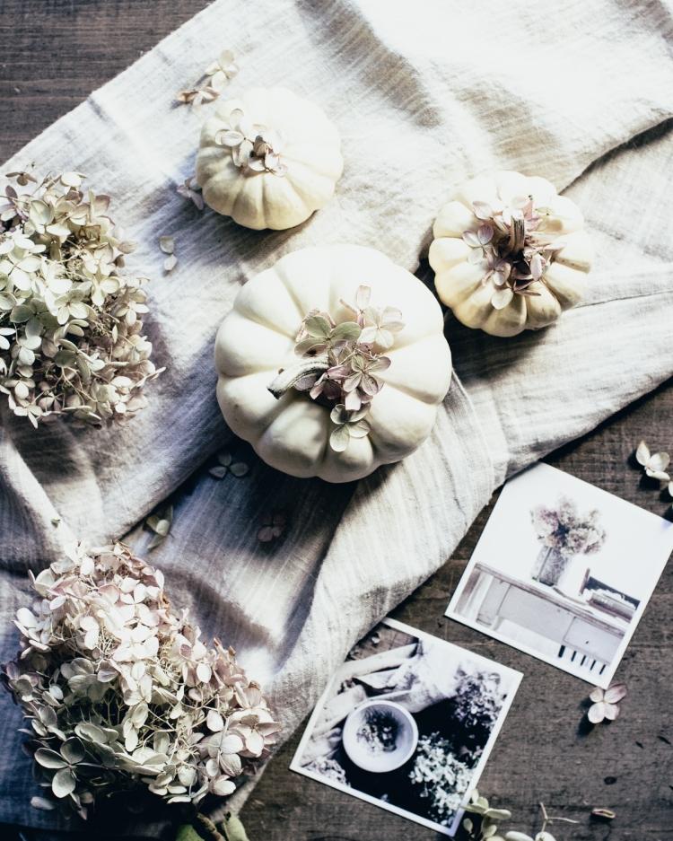 kpardell-white-pumpkin-hydrangeas-20163141