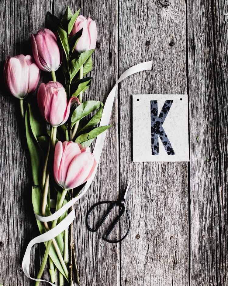 kpardell K tulips-20173834