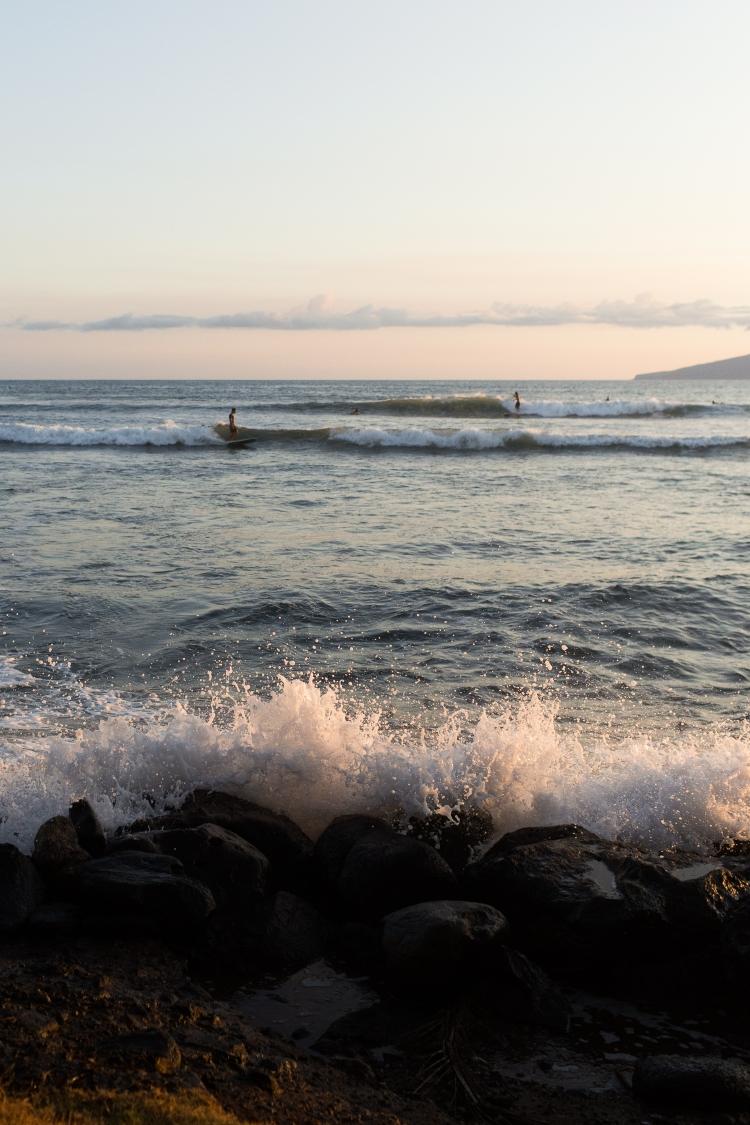 kpardell surfer-20174380