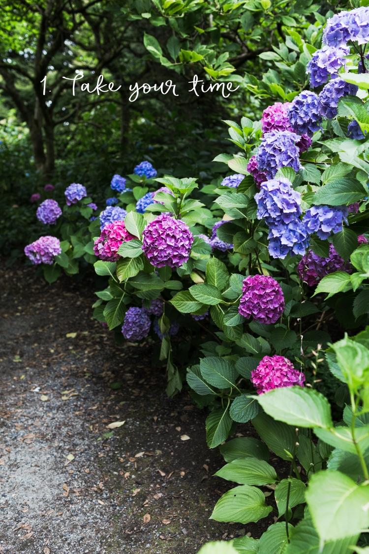 kpardell garden 3-