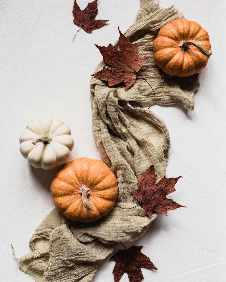 kpardell sunday pumpkin swirl-20176517