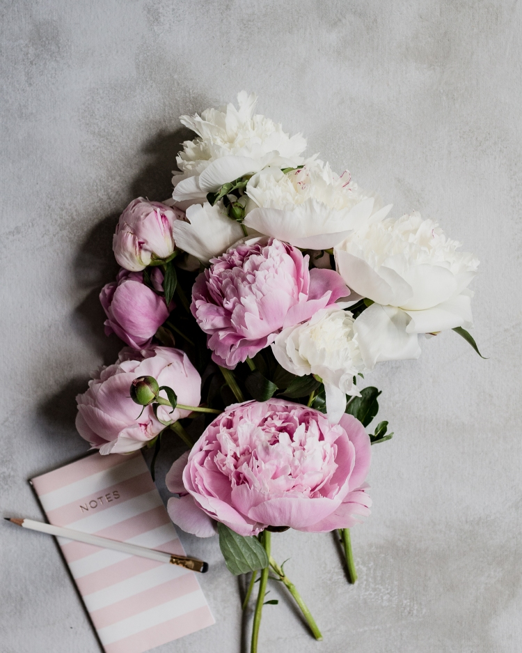 kpardell peonies and notebook-